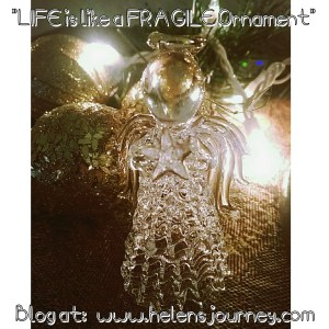 christmas star reflections with helens journey