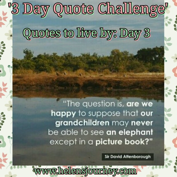 david attenborough quote for world earth day. day 3 of 3 day quote challenge by helen's journey blog www.helensjourney.com