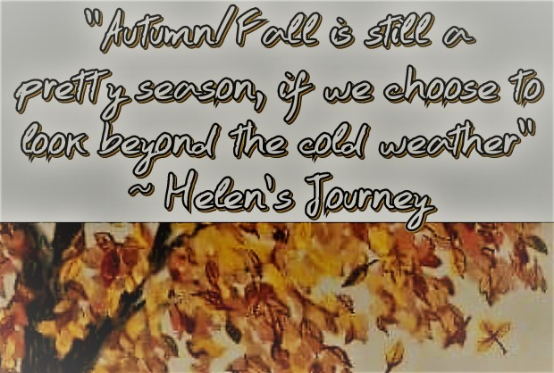 choosing to look beyond the cold weather to see the beauty in the season of autumn aka fall. post by Helen's Journey blog