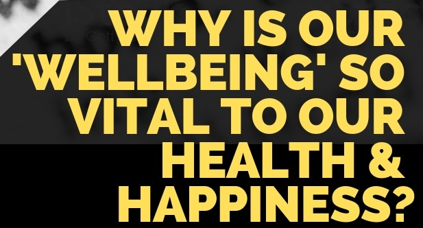 why is our wellbeing so vital to our health and happiness and how wellbeing niche bloggers play an important role